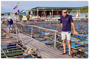 peternakan mutiara lombok missjoaquim.com