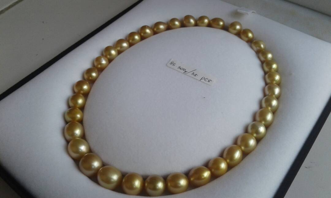 south sea pearl price 35p-0002