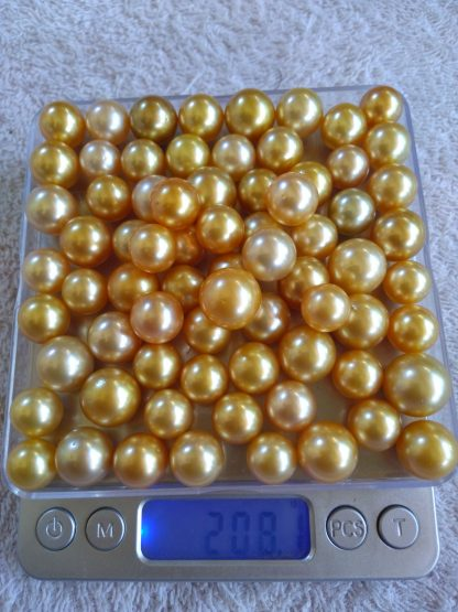 high quality gold south sea pearl 1